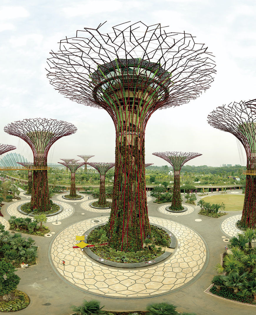 fff_ws2020_becker_singapore-trees.jpg