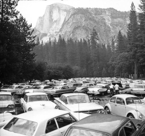 fff_films_ray2018_partridge_Yosemite_1966.jpg